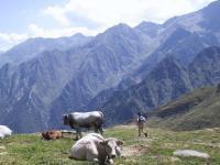 A los amantes de buenas fotos de montaña.